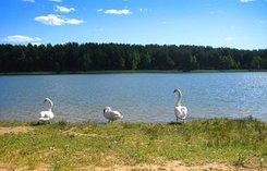САНАТОРНО-КУРОРТНОЕ ЛЕЧЕНИЕ на курортах в санаториях Гродненской области , Беларусь